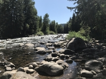 Biking along the Eagle River in the Rockies