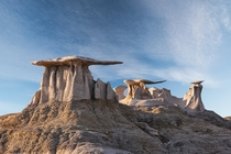 Bisti Wings Bisti Badlands De-Na-Zin Wilderness New Mexico