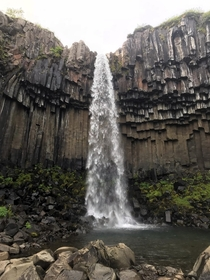 Black basalt waterfall at Svartifoss Iceland