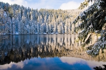 Black Forest Reflection in Germany