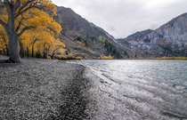Black sands and golden leaves of the Eastern Sierra