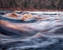Black-water rapids on the Suwannee at Big Shoals State Park Florida