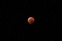 Blood Moon over Memphis