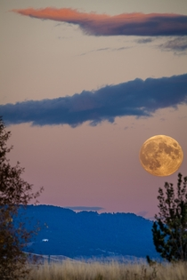 Blood Moon rising over Montana  x