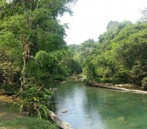 Blue Creek in Southern Belize Sorry for quality taken on cellphone