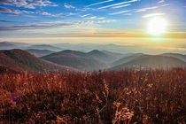 Blue Ridge Mountain Sunrise - Taken at Black Balsam Knob
