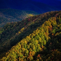 Blue Ridge Parkway NC to VA