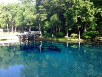 Blue Springs Florida