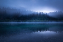 Bluey Lake BC - Beautiful blue hour fog rolling through the trees  OC