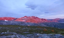 Blushing mountain Breivasstind in Brnny Norway close to midnight earlier this summer
