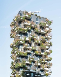 Boeris Bosco Verticale in Milan