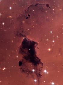 Bok globules within NGC