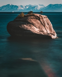 Bonsai Rock Lake Tahoe NV