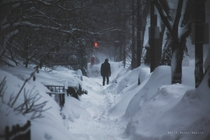 Boston is about to suffer a third snowstorm in three weeks I for one appreciate its beauty x-post from rpics
