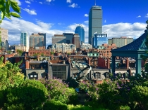 Boston summer from the rooftops