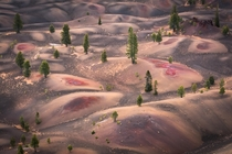 Bound by wild desire I fell into a ring of firePainted Dunes Lassen National Park CA