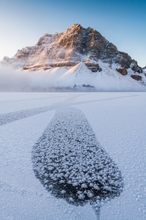 Bow Lake Banff Alberta
