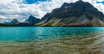 Bow Lake Jasper National Park  Canada