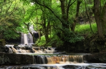 Bowlees Beck falls County Durham  by Bryan Morris