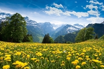 Braunwald Switzerland