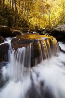 Braved some frigid waist-deep water in Great Smoky Mountains National Park NC for far too long to position my tripod close to this cool cascade
