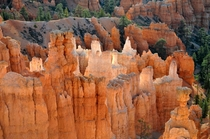 Bryce Canyon Backlighting Glowing Effect