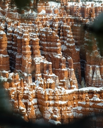 Bryce Canyon National Park Utah  x