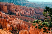 Bryce Canyon UT  by Elke Peterson