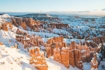 Bryce Canyon UT Glowing Under the Mornings First Light