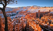 Bryce Canyon Utah  by Kevin Benedict