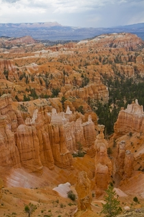 Bryce canyon Utah  by Tom Kelly
