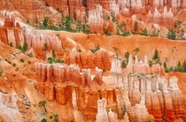 Bryce Canyon Utah I am still blown away by the color and the size of the hoodoos  OC