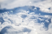 Bubbles frozen in frigid temperatures