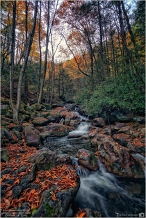 Buck Mountain Creek Carbon County Pennsylvania