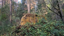 Bulldozer left in the woods