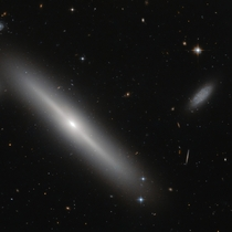 Busy bees - edge-on lenticular galaxy NGC