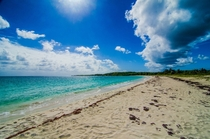 Busy Season of Vieques PR