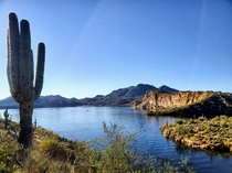 Butcher Jones Trail Saguaro Lake outside of Phoenix AZ OC x Beautiful January Day