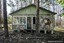 Cabin in Chernobyl youth summer camp destroyed in recent wildfire