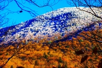 Camels Hump VT Where Fall ends and Winter begins
