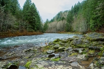 Camping near the Molalla River Oregon
