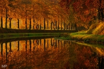 Can you believe this is not a painting Autumn in the Netherlands