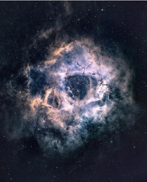 Can you see the cosmic Thats the rosette nebula