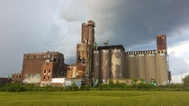 Canada Malting Silos Montral QC - abandoned in
