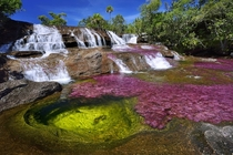 Cano Cristales river in Colombia at the end of rainy season