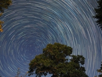 Cape Cod star trails