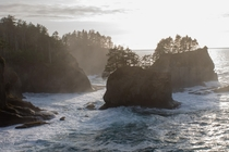 Cape Flattery Olympic National Park WA