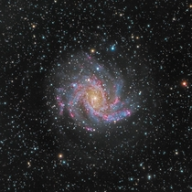 Captured the Fireworks galaxy a spectacular shot Imaged using the Meade LX-ACF  f StarLock a k telescope I pulled second mortgage to buy