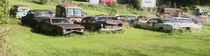 Car graveyard on a front lawn