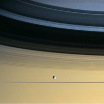 Cassini captured Saturns icy moon Dione floating in front of Saturn amp the rings which are seen nearly edge on casting shadows on the cloud tops